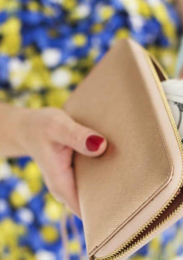 Woman Hands Holding Purse Dollar Bill Payment Concept